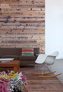 wood-wall-horwitz-residence-by-mnarc